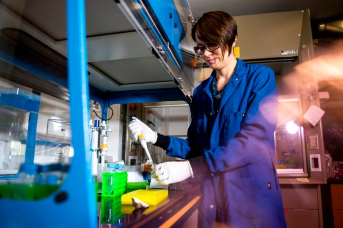 Katie Lotterhos, associate professor of marine and environmental sciences, recently received two prestigious awards: a CAREER award from the National Science Foundation, and a Fulbright scholarship.