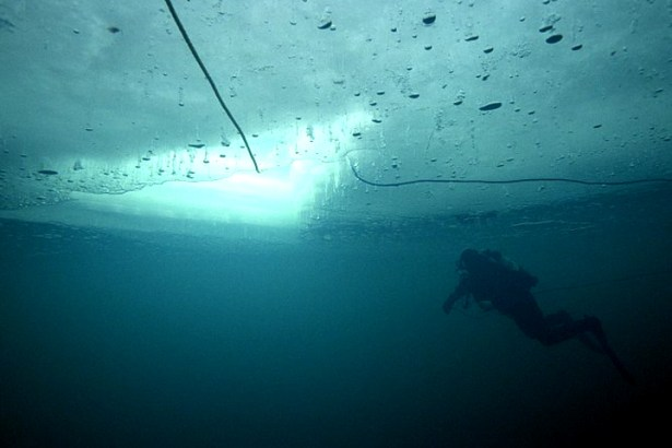 Ice_Diving_2