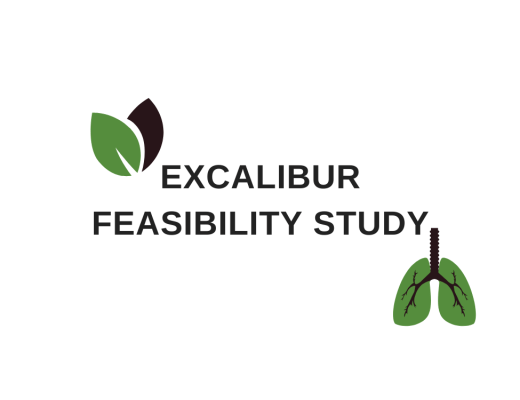 EXCALIBUR STUDY