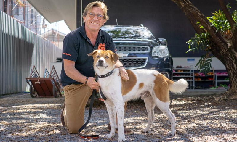 เจ้า 'โตโต้' สุนัขแสนซื่อตามหาเจ้าของที่ท่าเรือฉลอง ได้รับการดูแลที่ซอยด๊อกแล้ว พร้อมหาบ้านใหม่