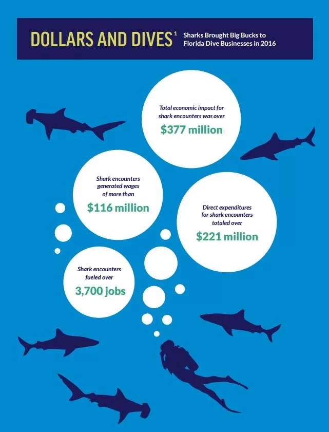 Shark-related dives in Florida alone generates more than 200 times that of the shark fin trade in the whole of the USA.