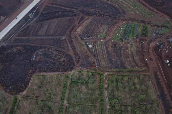 Wildfires in West Maui scorched acres of valuable farmland