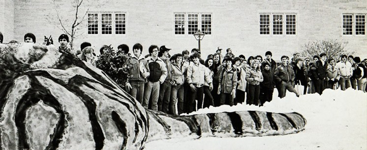A massive snow tiger in 1982.