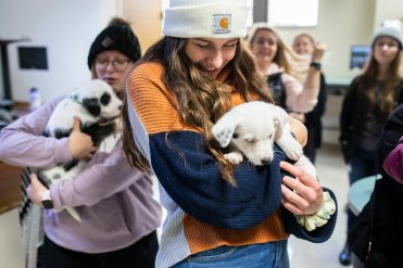 Students hold puppies after making a donation to help celebrate and promote Tommie Give Day. Liam Doyle/University of St. Thomas