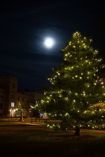 Holiday lights glow on trees below a bright moon on the lower quad.