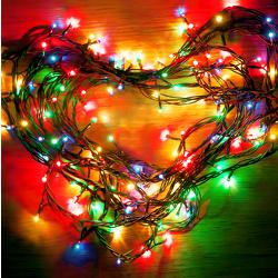 Christmas Lights Proposals