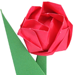 Origami Proposal
