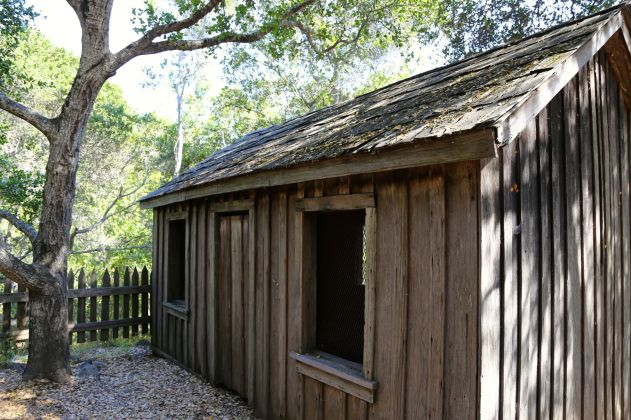 Rear view of the small Pfeiffer Homestead Cabin.