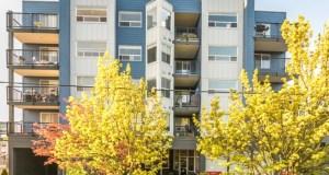 Seattle, Colliers International, The Midby Companies, Timberlane Partners, Ballard, Washington State Route 99, vacancy rate
