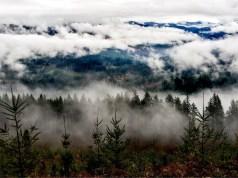 Seattle, Beneficial Ventures, Forterra NW, Battleground, Bells Mountain, sustainable development, Oregon, Washington