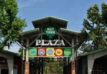 Nut Tree Shopping Center, Vacaville, Dunhill Partners, CBRE, Vacaville Premium Outlets