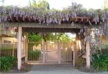 Marcus & Millichap, Arbordale Gardens Apartments, Fremont, Bay Area, Silicon Valley, California, Palo Alto, United States, Canada