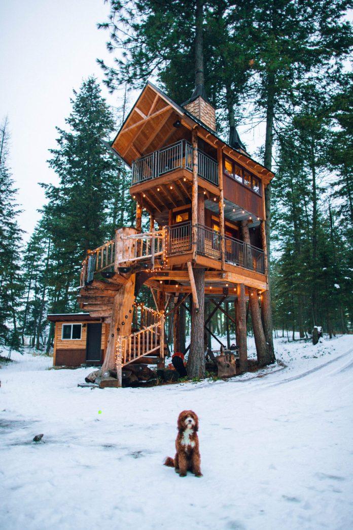 Airbnb vacation rentals COVID-19 Booking.com Expedia Stock Apps Jastra Kranjec
