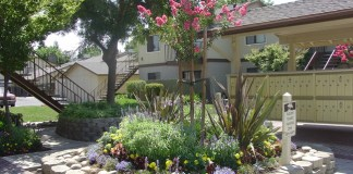 Fresno, The Mogharebi Group, Sandalwood Gardens,