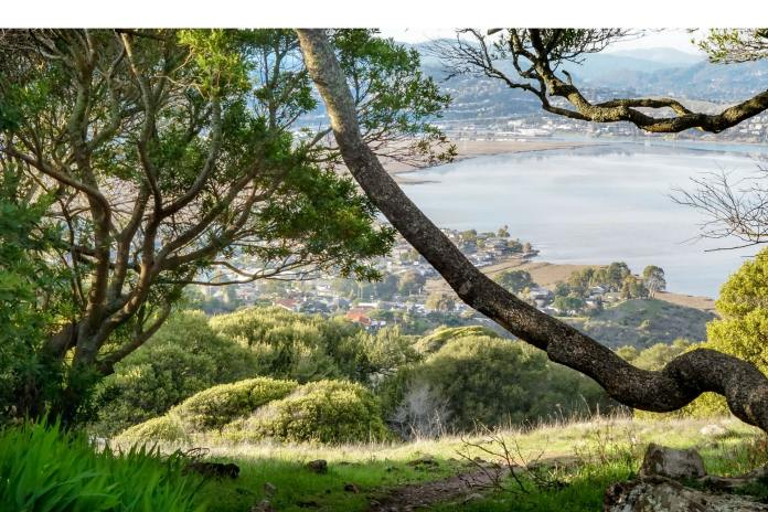 AIMCO, Corte Madera, Marin, Bay Area, Silicon Valley, San Francisco, Apartment Investment Management Company, AIR Communities, REIT, Oak Shore