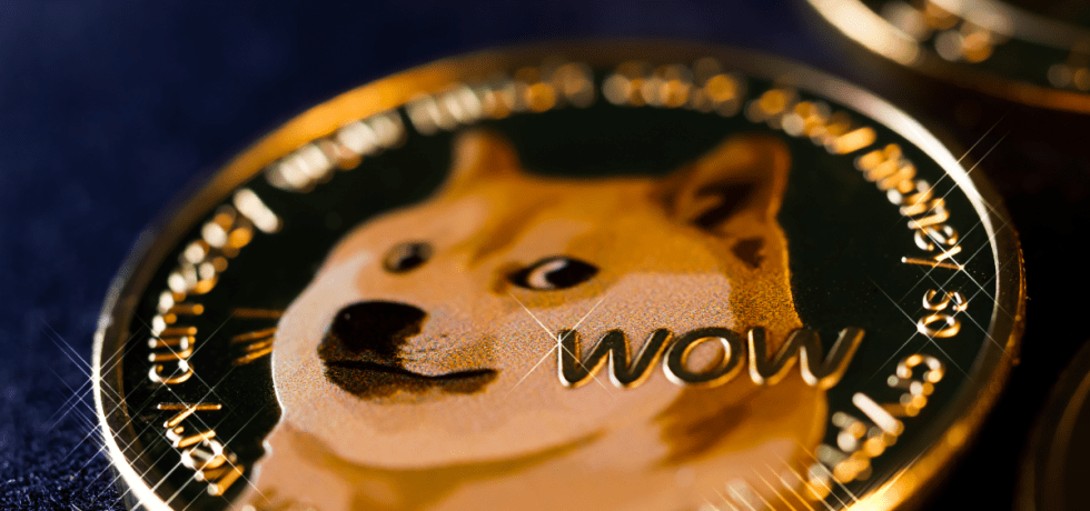 Dogecoin surges tremendously, Elon Musk is head over heels for Doge