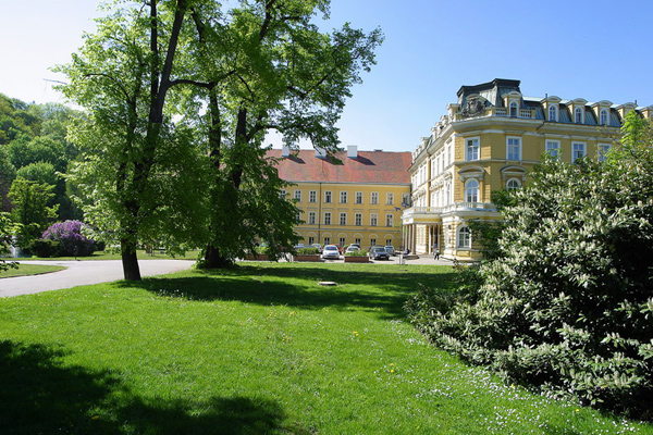 مصحة بيتهوفن The Beethoven Sanatorium