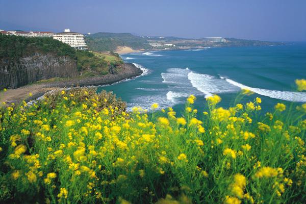 جزيرة جيجو ـ كوريا الجنوبية