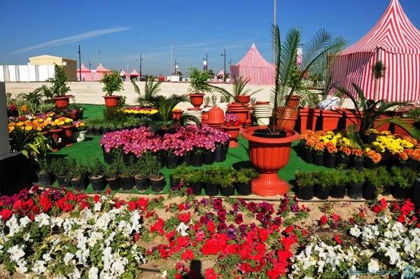 مهرجان الحدائق والنباتات في الجبيل