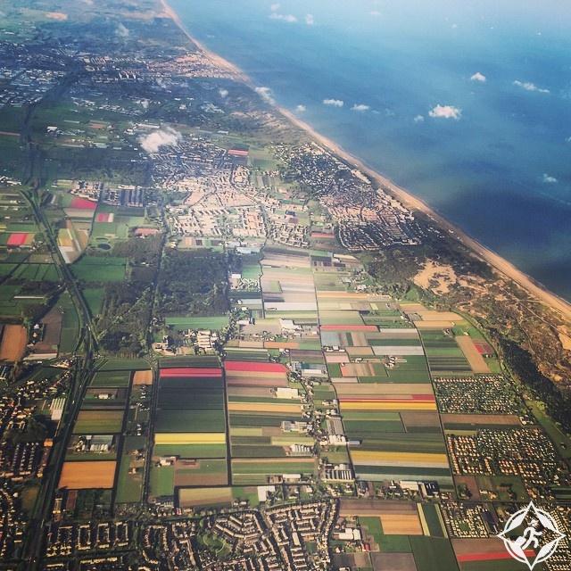 حقول التوليب في هولندا أجمل وجهات العالم