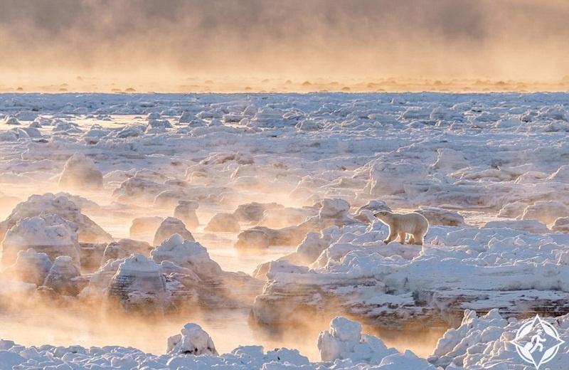 نار على الجليد