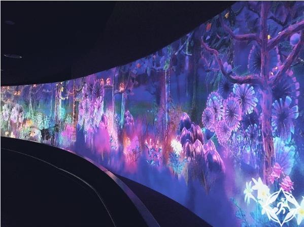 سنغافورة-المتحف الوطني في سنغافورة-صور الأسبوع 1