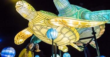 مهرجان فيفيد سيدني 3