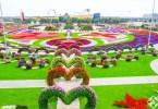 حديقة الزهور في دبي 16