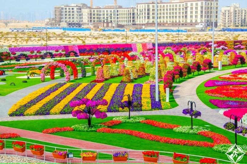حديقة الزهور في دبي 18