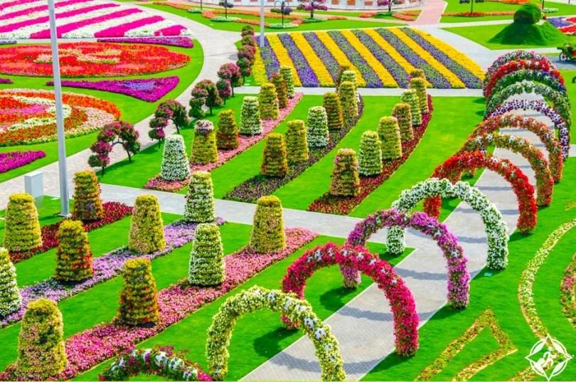 حديقة الزهور في دبي 3