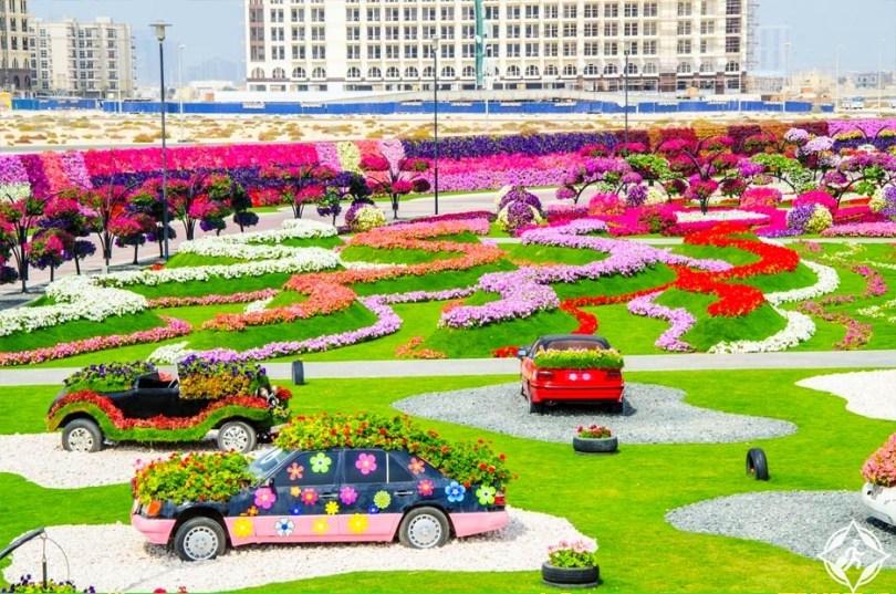 حديقة الزهور في دبي 5