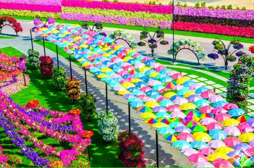 حديقة الزهور في دبي 7