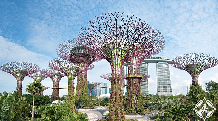 السياحة في سنغافورة مطار-شانغي.