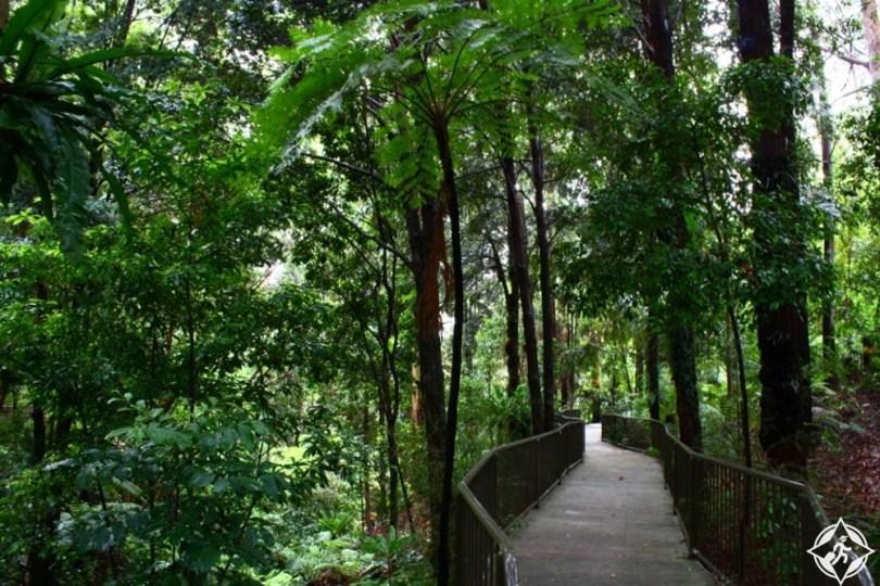المعالم السياحية في كانبرا - الحدائق النباتية الوطنية الأسترالية