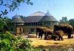 ميونيخ مع الأطفال - حديقة حيوان هيلابرون