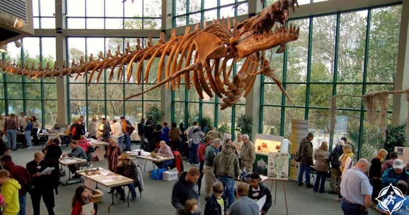 ميسيسيبي - متحف ميسيسيبي للعلوم الطبيعية