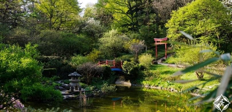 كلوج نابوكا - الحديقة النباتية
