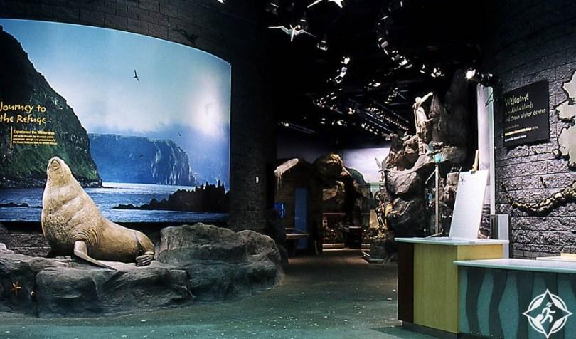 هومير - مركز زوار جزر ألاسكا والمحيط