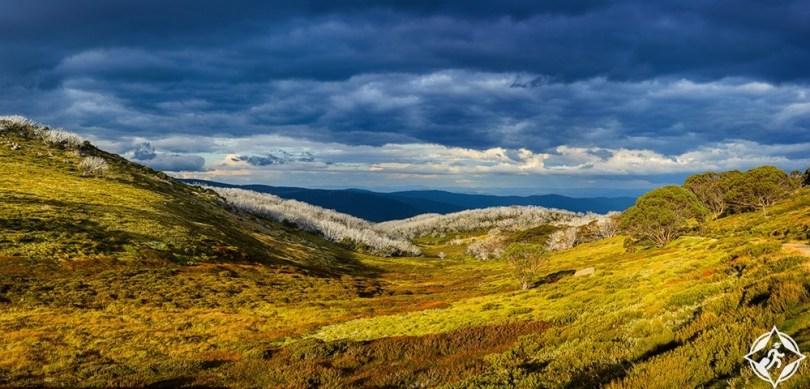 فيكتوريا - حديقة جبال الألب الوطنية