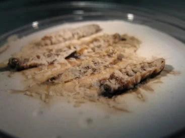 larvae destroyed by parasitic nematodes