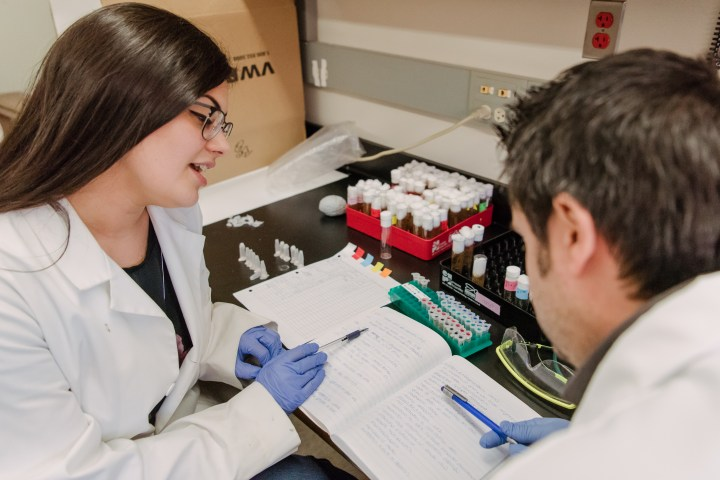 Two researchers examining a lab notebook