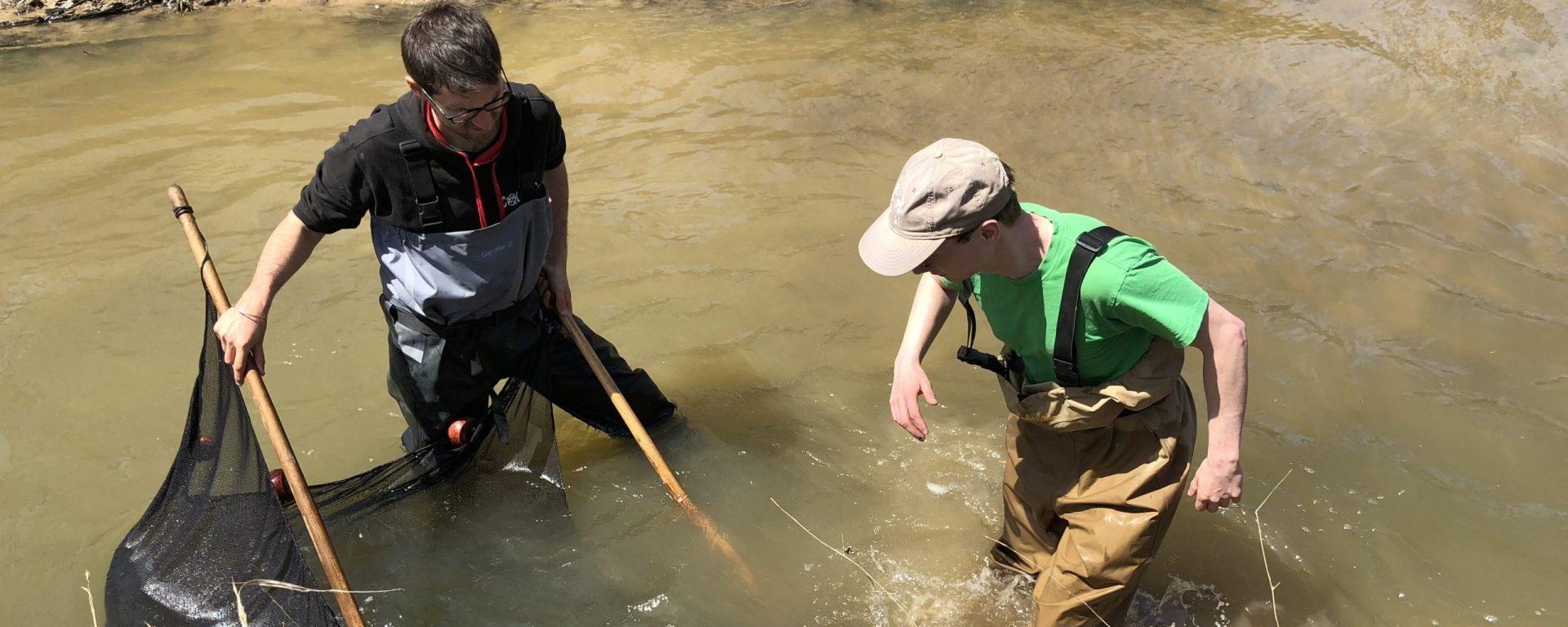 two men seine fishing in a stream
