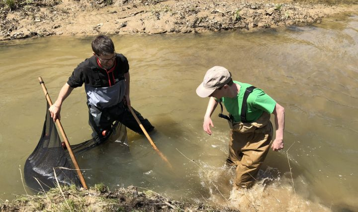 two men seine fishing in a stream