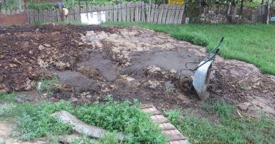 Foto // Locuitor al mun. Ungheni amendat pentru depozitarea unor cantități impunătoare de deșeuri pe malul Prutului