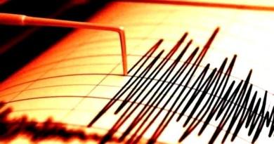 Cutremur cu magnitudinea ml 3.1 pe scara Richter înregistrat la 165 km de Ungheni
