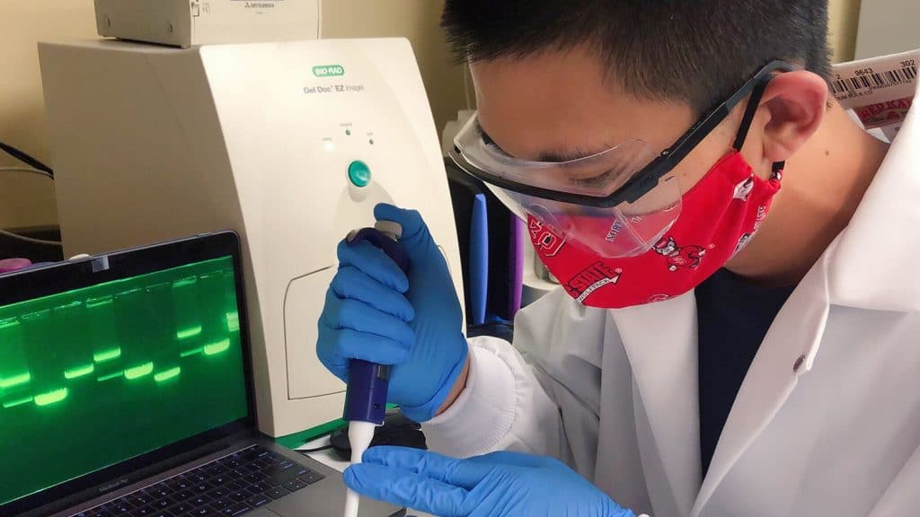 Zhongtian Zhang uses lab equipment to analyze the components of Sery-CRISPR
