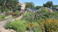Backyard Farmer gardens open house Oct. 1 | Nebraska Today ...