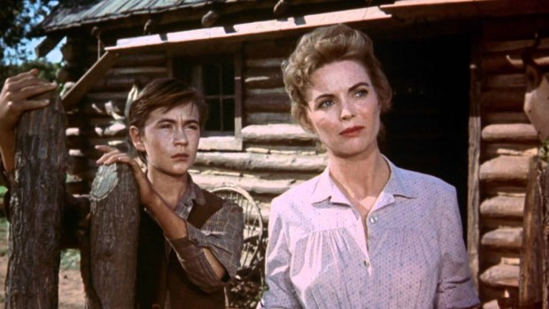 Image result for dorothy mcguire in old yeller
