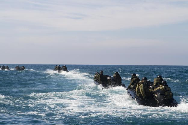 Marines and Japanese soldiers participate in amphibious raid training during Iron Fist 2015. US Marine Corps Photo