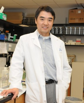 The American Cancer Society has awarded $720,000 to Dr. Zhaohui Wu to continue his studies of treatment options for triple-negative breast cancer.